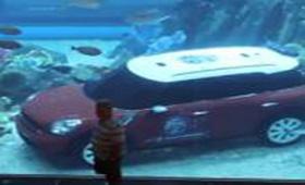 Рекламщики припарковали MINI в бассейне Dubai Mall